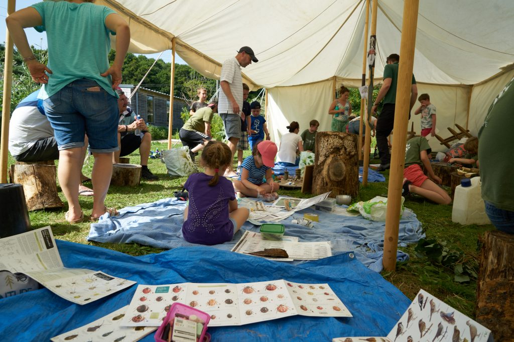 activities at the secret wildlife festival