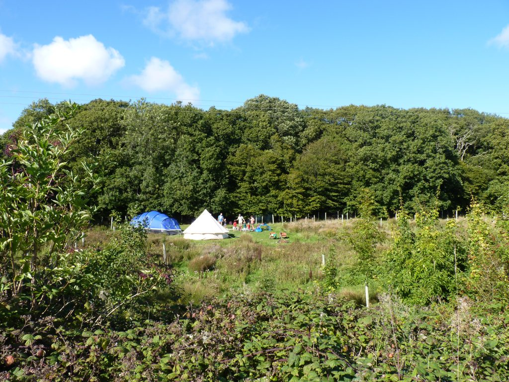 Mulberry pitch at the secret campsite near lewes