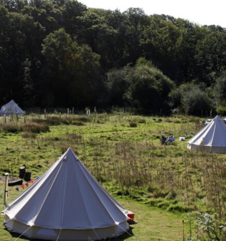 Bell Tents in meadow at The Secret Campsite