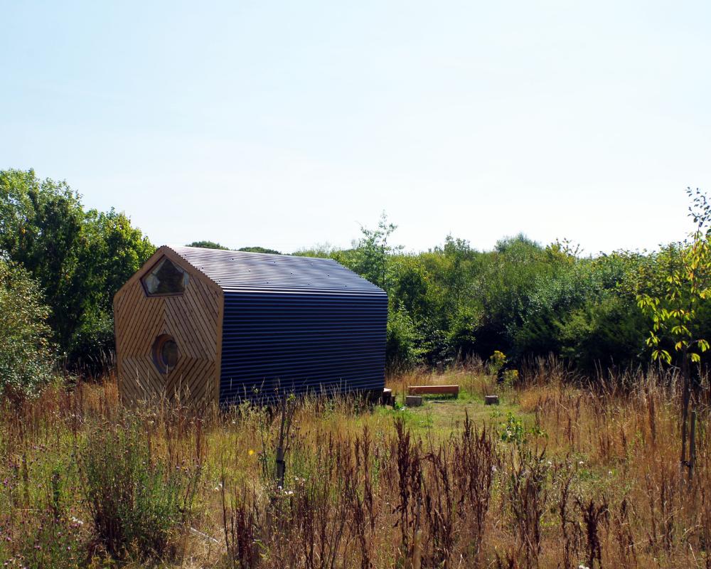The Okra at the Secret Campsite